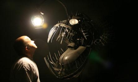 Creatures of the Deep - Создания морских глубин Justin La Doux