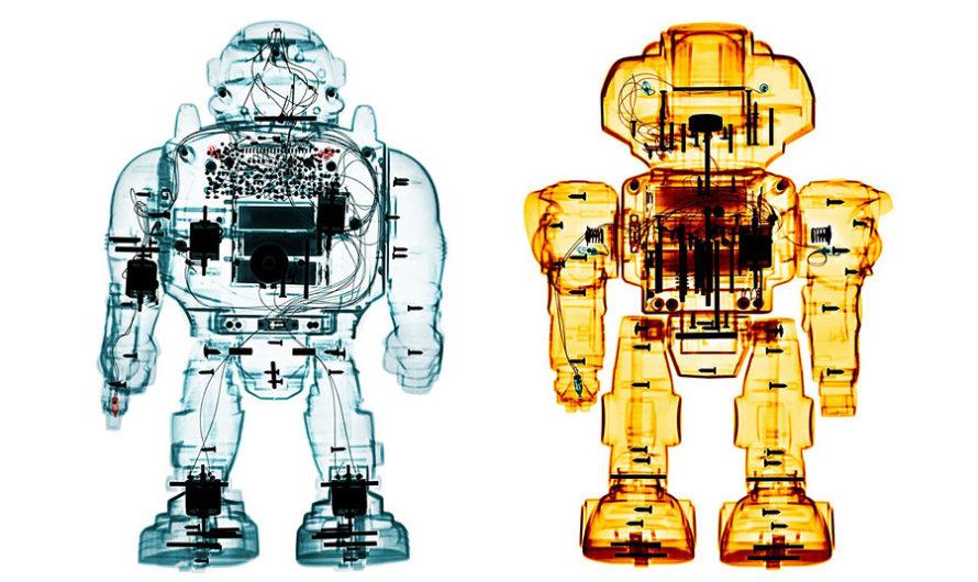 Игрушки под рентгеном : Фотографии Brendan Fitzpatrick