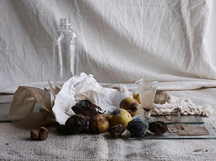 «Recycled Beauty» - (Не)увядающая красота Лори Фрэнкель и Дианы Гэттердэм
