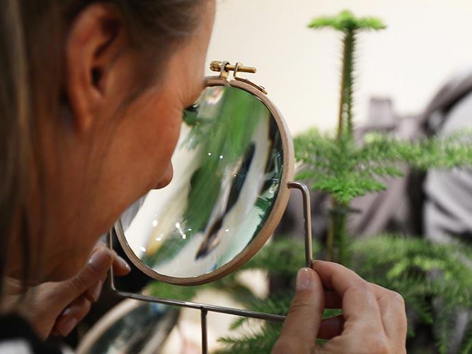 «Phytophiler» - набор аксессуаров для растения студии дизайна Dossofiorito