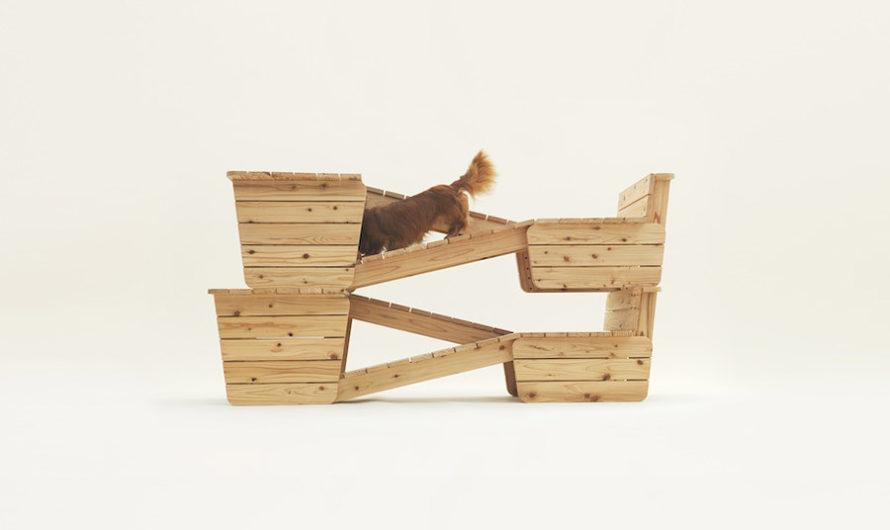 Собачья жизнь : Архитектура для собак Kenya Hara