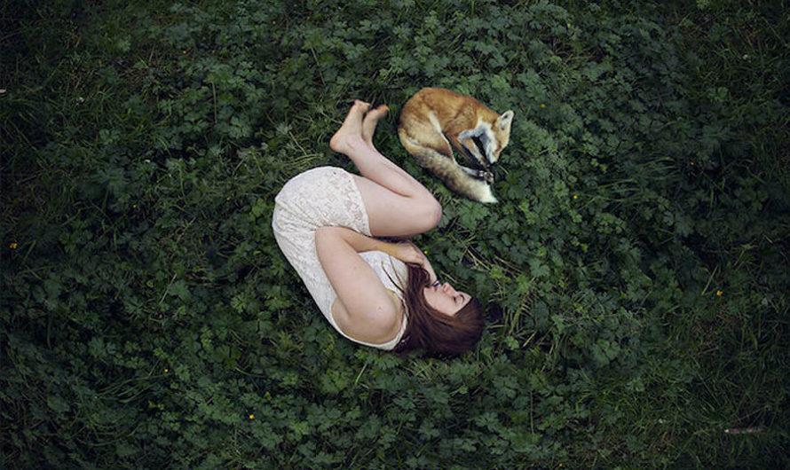Свернуться и заснуть : Фотографии Elena del Palacio