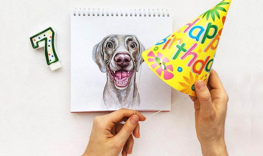Человек собаке друг : Рисунки Valerie Susik