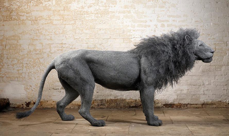 В мире животных : проволочные скульптуры лондонской художницы Kendra Haste