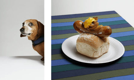 Хот-доги : Собачья жизнь Jess Bonham
