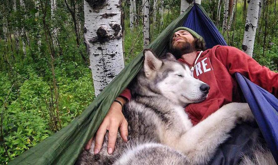 Человек собаке друг : Путешествия Kelly Lund и Loki